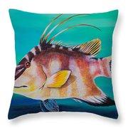 Hogfish Throw Pillow