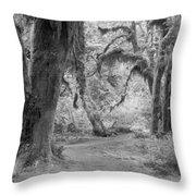 Hoh Rain Forest 3378 Throw Pillow