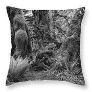 Hoh Rain Forest 3389 Throw Pillow