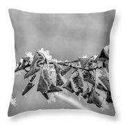 Hoir Frost On Leaves Throw Pillow