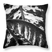 Hoja De La Suerte Throw Pillow