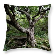 Hold Firm Throw Pillow
