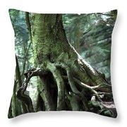Hold On To Me.  Throw Pillow