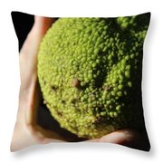 Holding A Tree Seed Throw Pillow