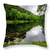 Hole In The Lake Throw Pillow