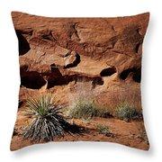 Holes - Yucca - Kodachrome Basin Throw Pillow