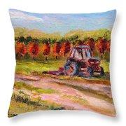 Holicong Road Farm Throw Pillow