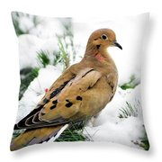 Holiday Dove Throw Pillow