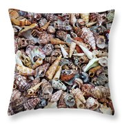 Holiday Harvest Throw Pillow