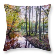 Holiday Park Lake At Dusk Throw Pillow