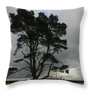Holland Desert Throw Pillow