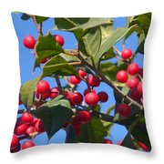 Holly Berries On A Wintry Day I Throw Pillow