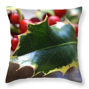 Holly Berries- Photograph By Linda Woods Throw Pillow