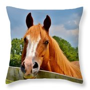 Holly Springs Throw Pillow