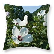 Hollyhock At Sunrise Throw Pillow