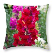 Snapdragons Throw Pillow