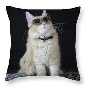 Hollywood Cat Throw Pillow