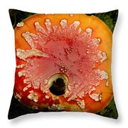 Holy Amanita Throw Pillow