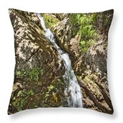 Holy Jim Falls Throw Pillow