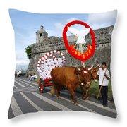 Holy Spirit Festivities Throw Pillow
