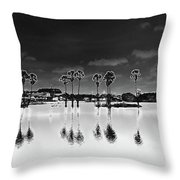 Homage To The Moon Throw Pillow