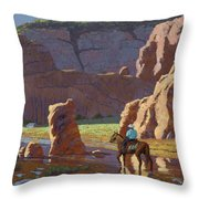 Home After The Storm Throw Pillow