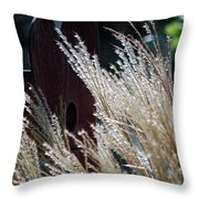 Home Behind The Grass Throw Pillow