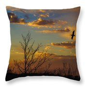 Home For The Night Throw Pillow