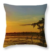 Home Home On The Swamp Throw Pillow