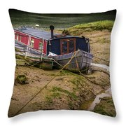Home Is On The Mud Throw Pillow
