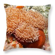 Home Of The Clown Fish 2 Throw Pillow