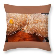 Home Of The Clown Fish 3 Throw Pillow