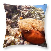 Home Of The Clown Fish 4 Throw Pillow