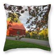 Home On The Farm Throw Pillow