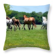 Home On The Range II Throw Pillow