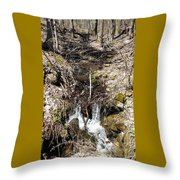 Home Stream Throw Pillow