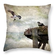 Homebuilding Throw Pillow