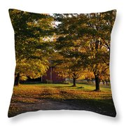 Homecoming Two Throw Pillow