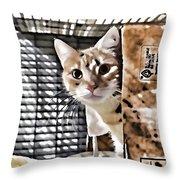Homeless Cat Throw Pillow