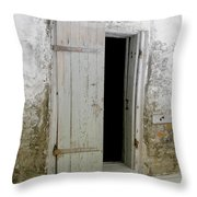 Homeplace Doorway Throw Pillow