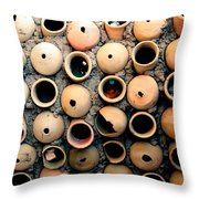 Homes For The Others Throw Pillow