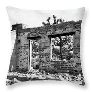 Homestead Ruins Throw Pillow