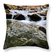 Hometown Series - Blue Ridge Parkway  Throw Pillow
