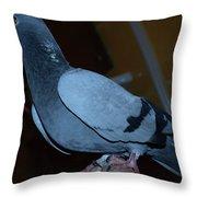 Homing Pigeon Throw Pillow