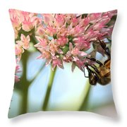 Honey Bee 2 Throw Pillow