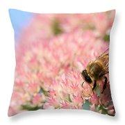 Honey Bee 3 Throw Pillow
