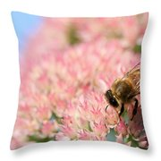 Honey Bee 3 Throw Pillow
