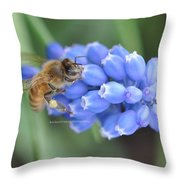 Honey Bee On Blue Flowers Throw Pillow