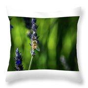 Honey Bee On Flower #5 Throw Pillow