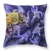 Honey Bee On Globe Allium Throw Pillow